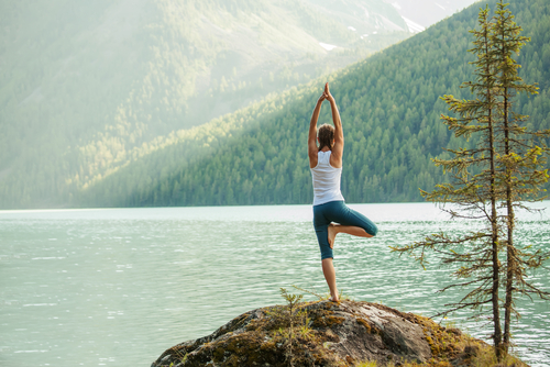 The 10 Best Yoga Certifications In The World Sports Management Degree Hub